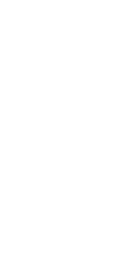 Fondazione Festival Pucciniano