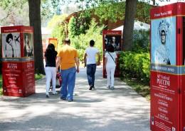 Foto Pubblico Parco 2 FP